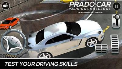 小车停车模拟截图