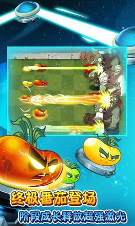 植物大战僵尸2终极番茄