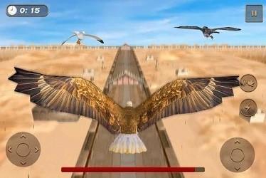 老鹰比赛模拟器截图