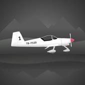 飞行运输模拟