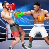 3D拳拳冠军