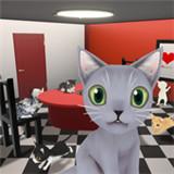 茶室猫逃生