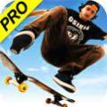 模拟滑板3手游