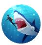 巨齿鲨来了