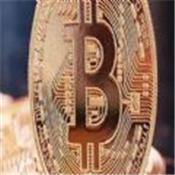shibmoon币